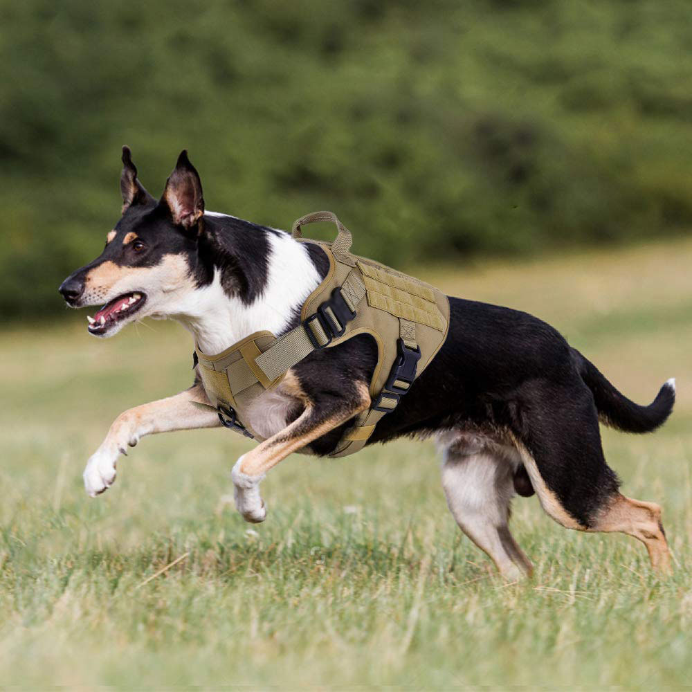 Image 2 - Tactical Dog Harness Military Service Dog Vest with Handle for  Training Adjustable Working K9 Dog Harness For Large Medium  DogsHarnesses