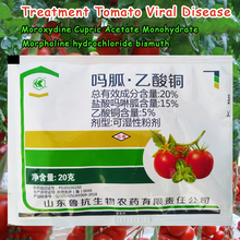20% Treatment of tomato virus disease Moroxydine hydrochloride Morpholine bismuth COPPER(II) ACETATE MONOHYDRATE Cupric acetate
