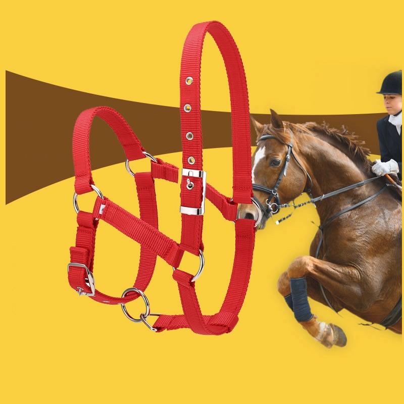 Horse Riding Durable Horse Head Collar Halter Bridle Horse Riding Equipment Halter Horse Accessories
