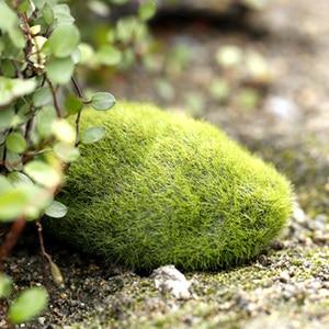 Image 3 - 시뮬레이션 이끼 거짓 녹색 돌 바위 이끼 공장 미니어처 사진 촬영 배경 장식품 사진 스튜디오 액세서리