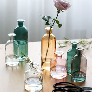 Vase Flowers Glass Dried Home-Decoration-Accessories Living-Room Transparent Nordic Ins-Style