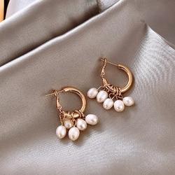 French Gentle Pearl Tassel Earrings Contracted C Word Fair Maiden Temperament Earrings Small Earrings Jewelry Gifts