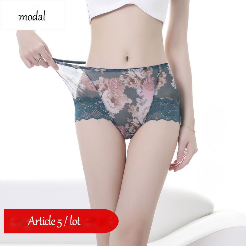 New design ultra soft mesh printed panties sexy lace panties women modal crotch women sexy transparent mid rise briefswomens panties   -