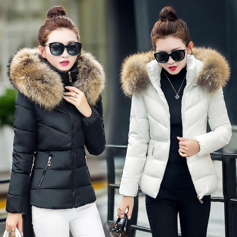 2019 Cotton Women Short Paragraph Winter New Slim Hooded Cotton Jacket Korean Version Fur Collar Large Size Padded Cotton Jacket
