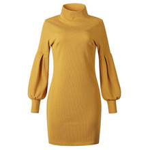 Women Casual Knitted Sweater Mini Dresses 2019 New Keep Warm Thicken Winter Dress Fashion Ladies Long Sleeve Turtleneck Dress цены