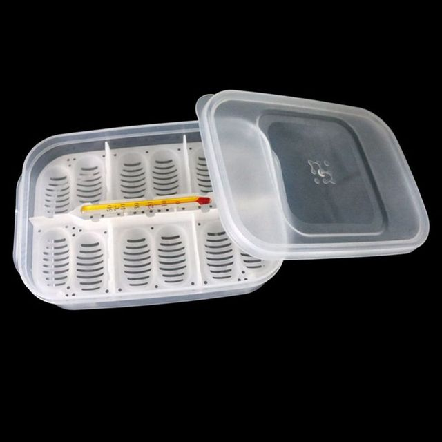 12 Holes Reptile Egg Incubation Tray With Thermometer Incubating Gecko Lizard Snake Eggs Incubation Tool 2