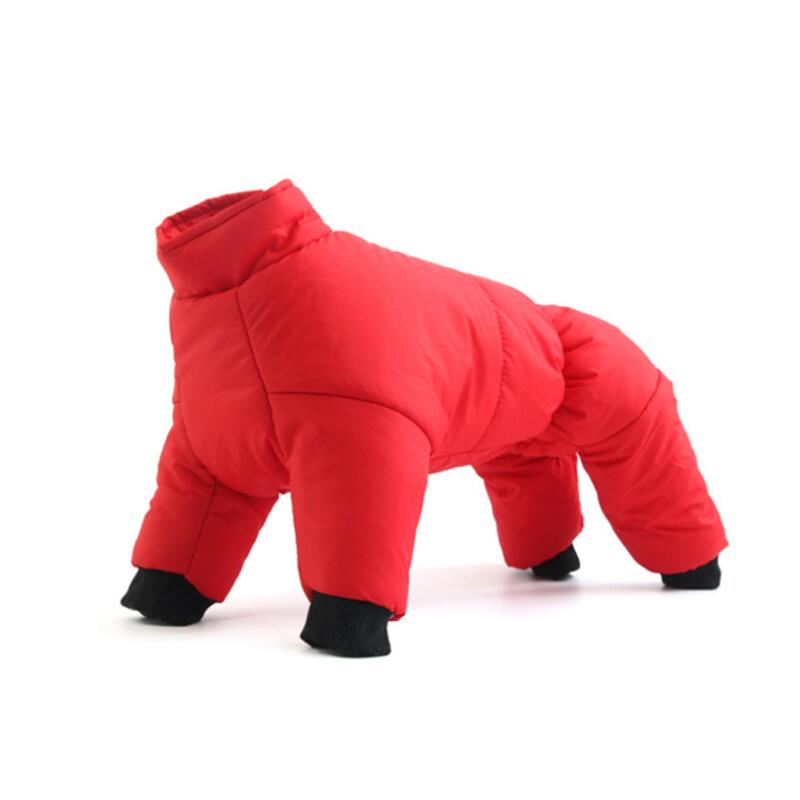 Köpek Mont