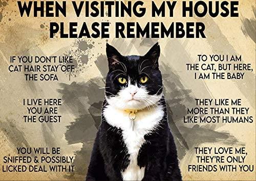 Металлический постер в виде кошки-во время посещения моего дома, пожалуйста, помните о милом логотипе, кофейни, на кухню, лучший подарок для ...