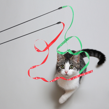 Cat Stick with Ribbon 1