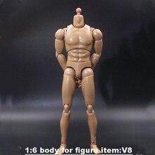 1/6 סולם זכר דמות גוף צר כתף איש שרירים חייל 12 Inche בובת גוף פעולה איור DIY מטלטלין