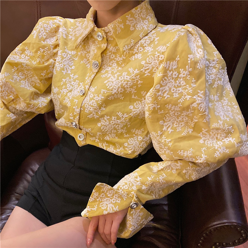 H90a42f5df8614a2db03317a4357d8205C - Spring / Autumn Turn-Down Collar Puff Long Sleeves Embroidery Floral Blouse