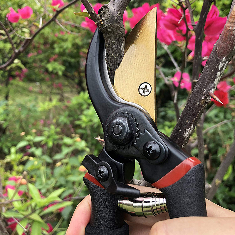 Image 4 - FIRMOR Professional Pruning Shears Titanium Secateurs Bypass Pruner Hand Gardening Plant Scissor Branch Trimmer Tools-in Pruning Tools from Tools