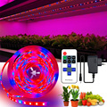 2835 LED Grow Lamp Full Spectrum Plants Seedlings Flower Greenhouses Hydroponic Garden Plants Growing Plant Light Strip Set
