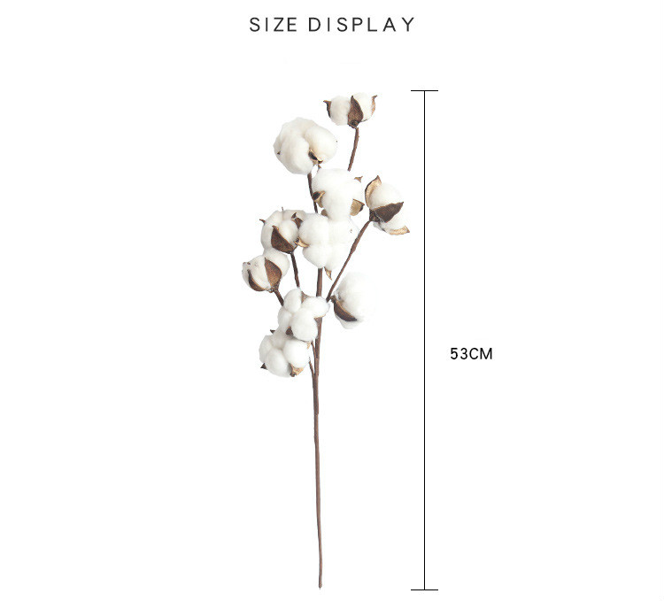10HeadsNaturally-Dried-Cotton-Flower-Artificial-Plants-Floral-Branch-for-Wedding-Party-Decoration-Fake-Flowers-Home-Decorflower (5)