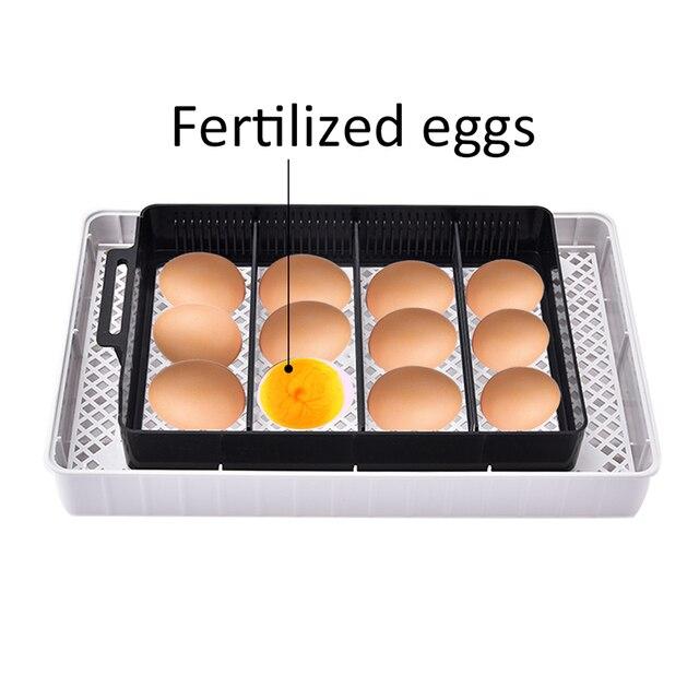 Household Full Automatic Incubator Brooder Farm Hatchery Machine 12 Egg Hatcher Chicken Egg Incubator Goose Bird Quail Brooder 3