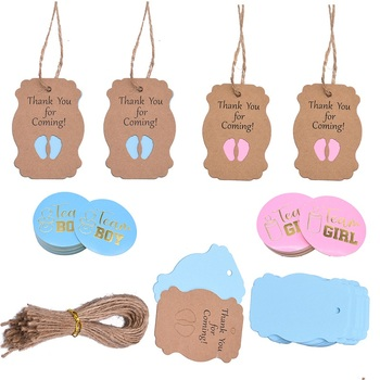 Team Boy Girl Stickers or Hanging Tags for Gender Reveal Party Creative Decoration Baby Shower Supplies
