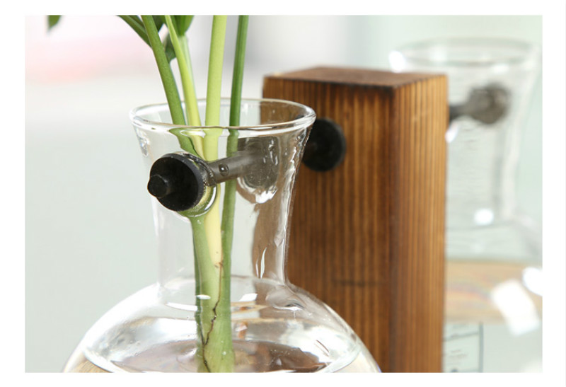 Clear Terrarium with Wooden Frame for Growing Hydroponic Indoor Ideal for Home/Office Decor 12