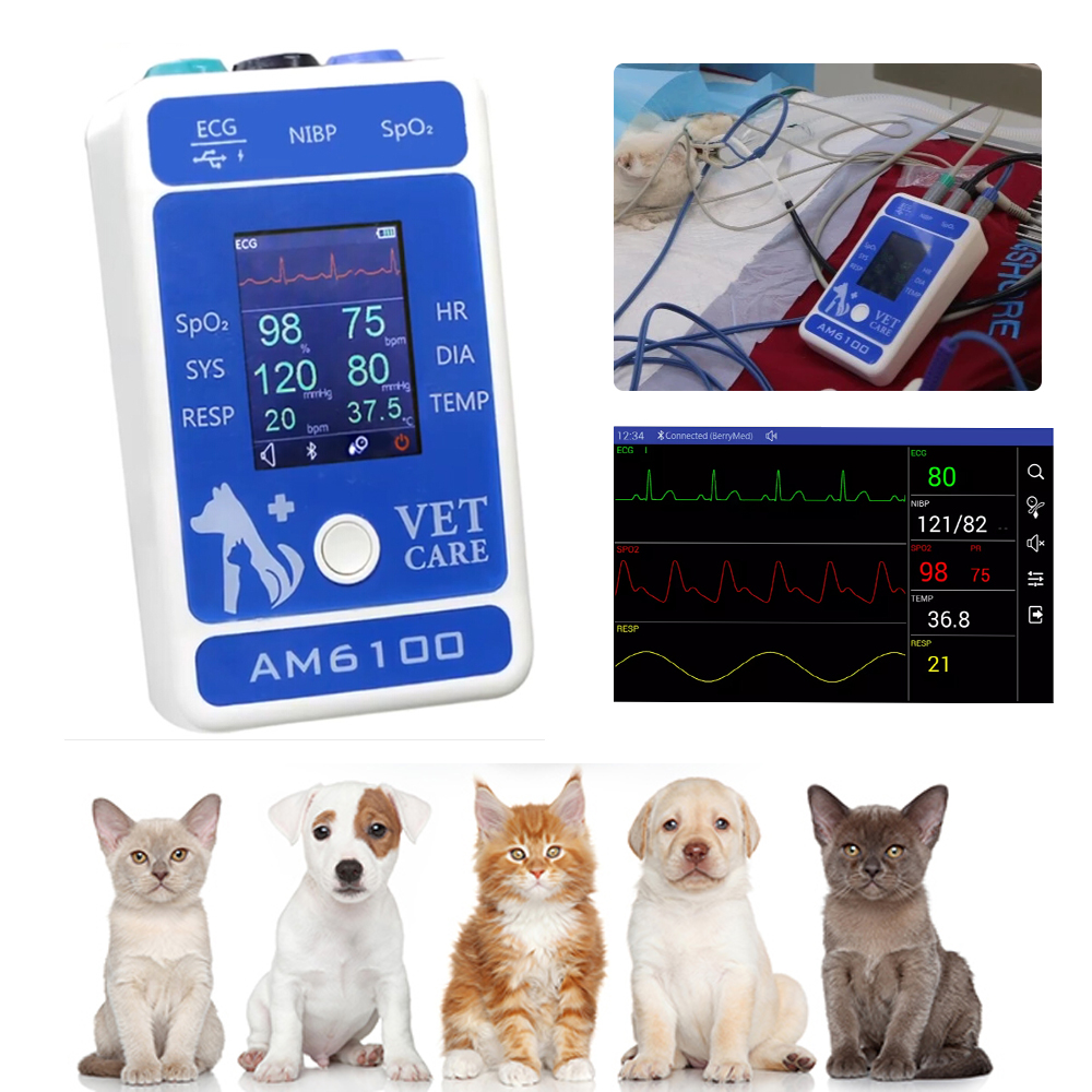 Animal Portable Monitor Veterinary Monitor For Animal Pets ,dogs, Hores Veterinary Patient Monitor