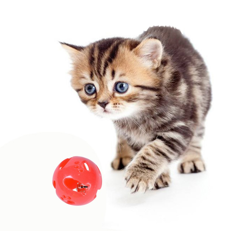 10PCS Set Small Pet Small Fish Vocal 4cm Bell Plastic Original Toys For Cat Ball with Bell Ring Play Chew Rattle Scratch Ball in Cat Toys from Home Garden