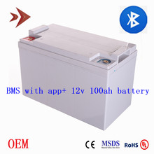 Lifepo4 12V 100Ah Battery Built 4S BMS with Bluetooth Function OEM Deep Cycle Lithium Ion Batteries for RV Camper Motorhouse