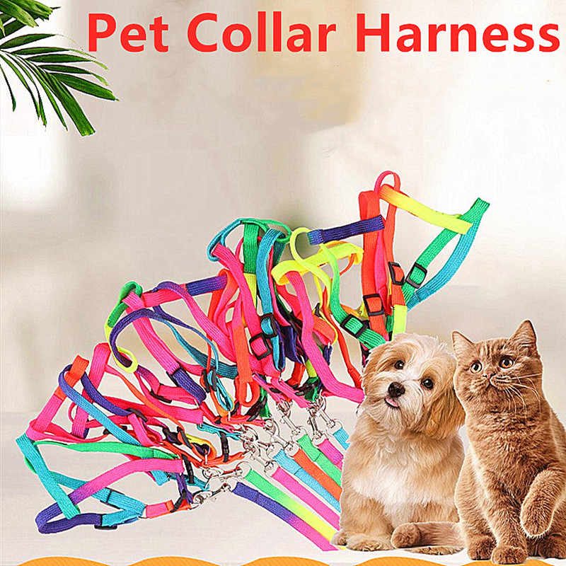 1PC Bunte Regenbogen Haustier Hund Kragen Harness Leine Weiche Walking Harness Blei Bunte Durable Zugseil Nylon Pet Liefert