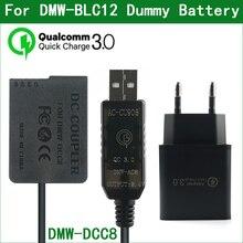 DMW BLC12 Batterie Factice DMW AC8 DMW DCC8 Coupleur CC pour Panasonic DMC G5 G6 G7 G8 GX8 G80 G81 G85 GH2 FZ200 FZ300 FZ330 FZ2000