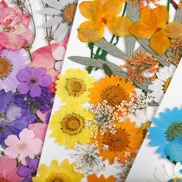 1 Pack DIY Dried Flowers Resin Mold Fillings UV Expoxy Flower for Nail Art Pressed Flowers for Home Decor Handicraft
