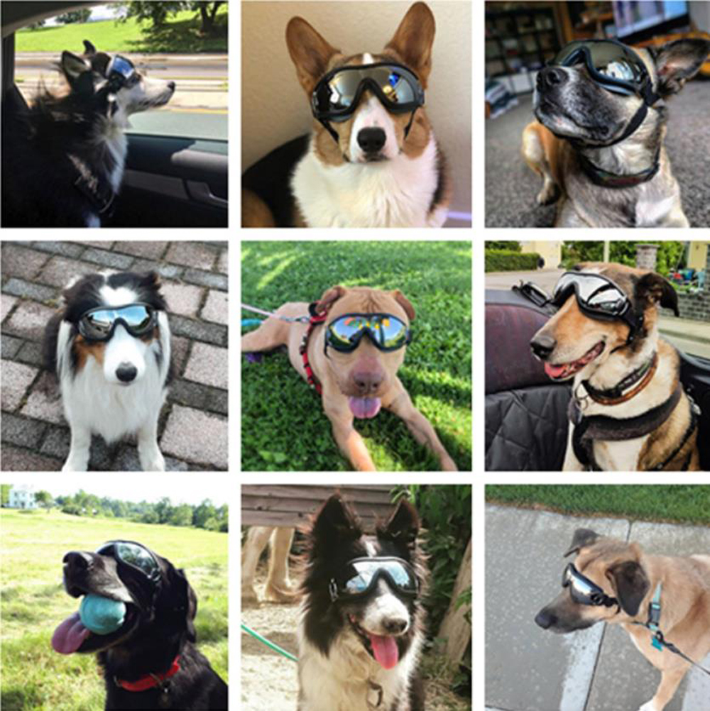 2020 HOT Adjustable Pet Dog Goggles Sunglasses Anti-UV Sun Glasses Eye Wear Protection Waterproof Sunglasses Pet Dog Supplies 10