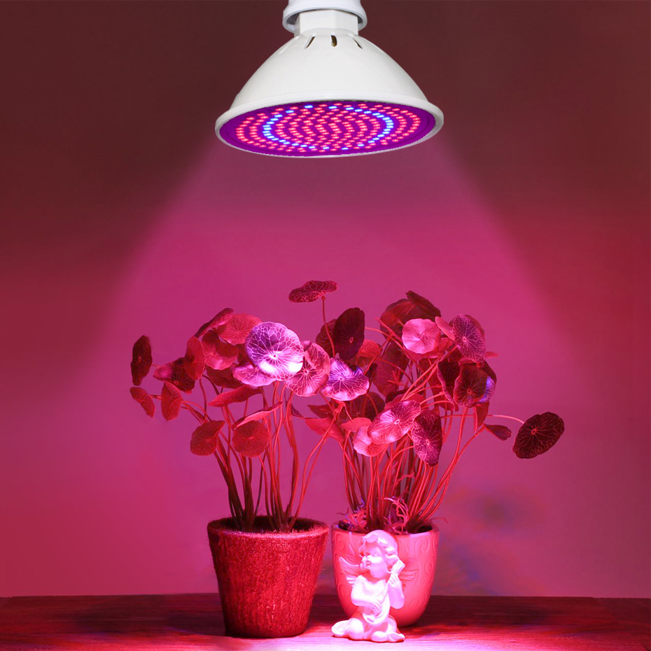 Phyto Led E27 Grow Light Led  Full Spectrum Grow Lamp Bulb  4W 8W 18W Cob Blue+Red Indoor Seedsflower Plant Light Hydroponic