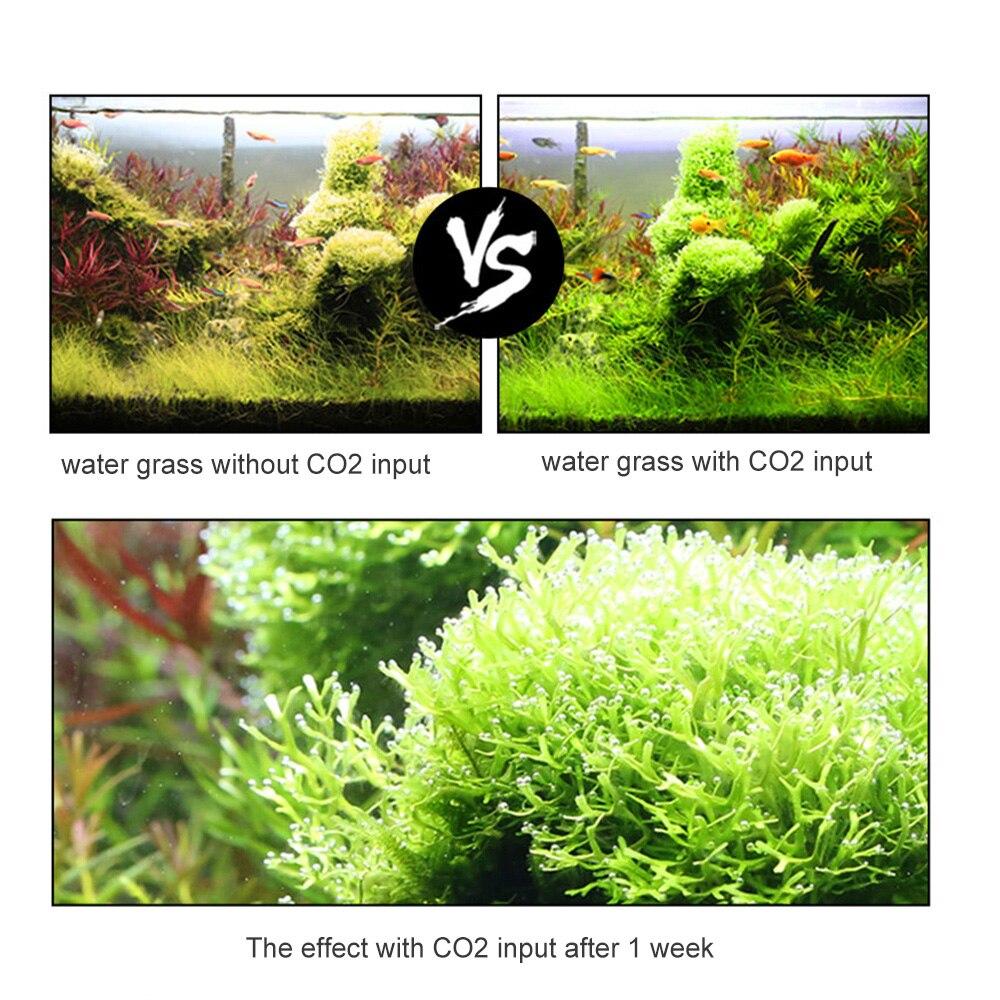 이산화탄소 기관총 수족관 diy 이산화탄소 발전기 시스템 키트 이산화탄소 밸브 atomizer 솔레노이드 이산화탄소 수족관 물고기 탱크 식물에 대한-에서CO2 장비부터 홈 & 가든 의  그룹 3