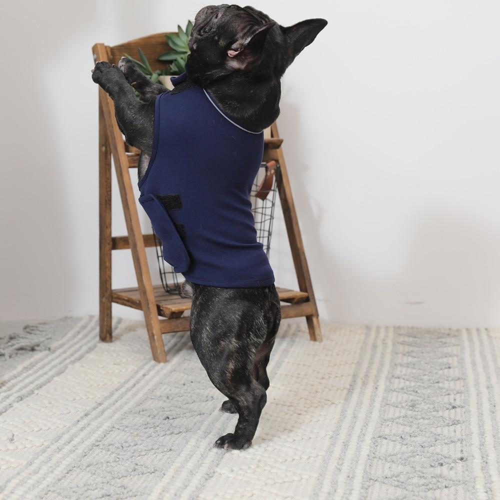 thunder vest dog (38)