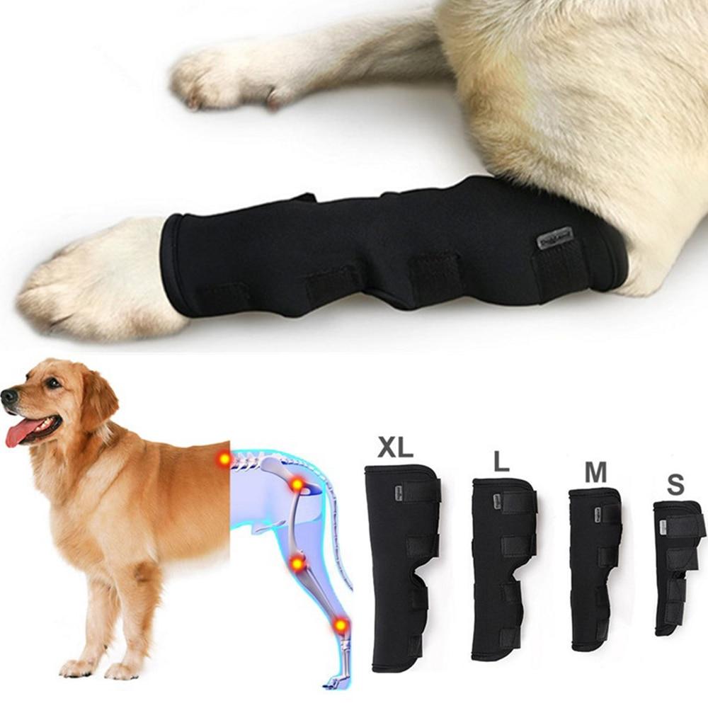 2Pcs lot font b Pet b font Knee Pads Dog Support Brace for Leg Hock Joint