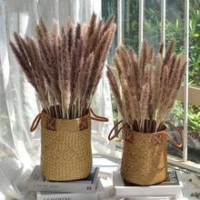 30 pçs flor seca pampas grama para festa decoração de casa moderna ceremon phragmites fotografia decoração do jardim 60cm pampas flor