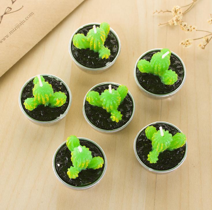 6 peças mini planta suculenta vela decoração