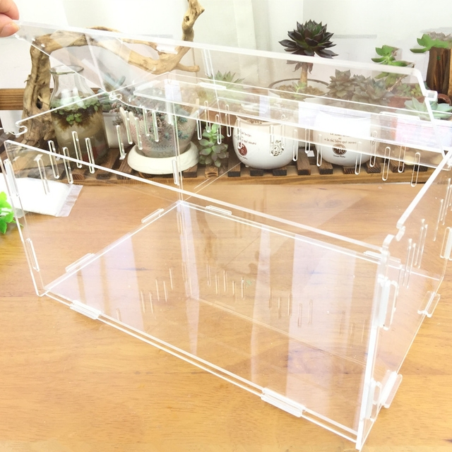 Reptile & Insect Breeding Box For Spiders Scorpions Crickets And Small Snakes. 4