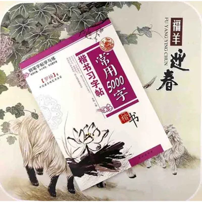 Chinese Calligraphy Copybook Pen Pencil Practice Book Pin Yin Pinyin Chinese Characters Learning Book  5000 Words