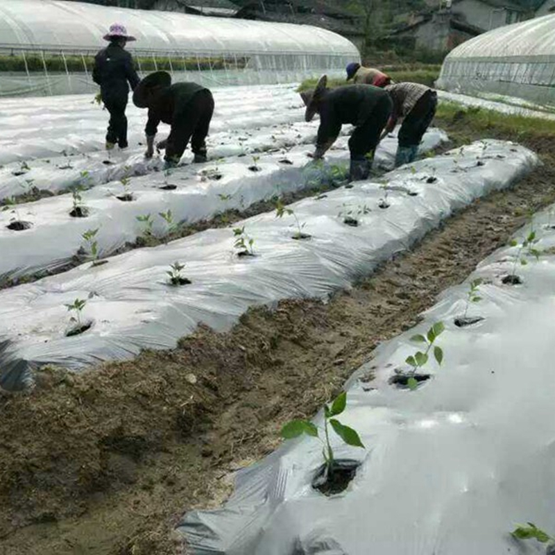 40m~5m 0.02mm Garden Silvery Black Reflective Film Orchard Fruit Tee Planting Plastic Mulch Film Greenhouse Vegetable Care Cover