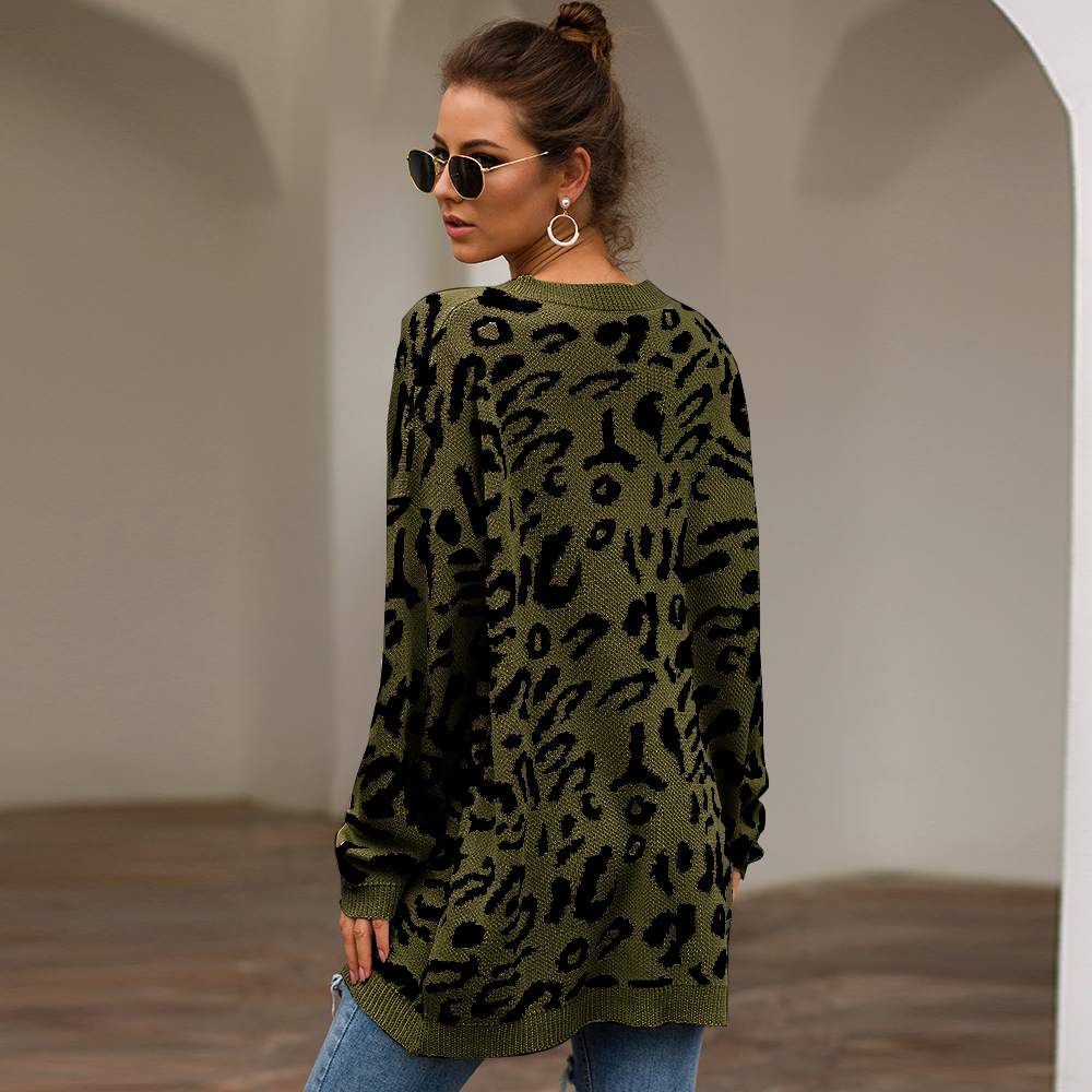 Dilusoo Leopard Print Winter Knitted Sweater Women O-neck Long Sleeve Loose Sweaters Female 19 Casual Autumn Overalls Sweaters 11