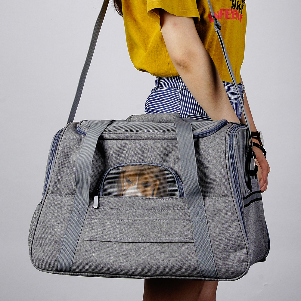Portable Small Dog Backpack Carrier 15