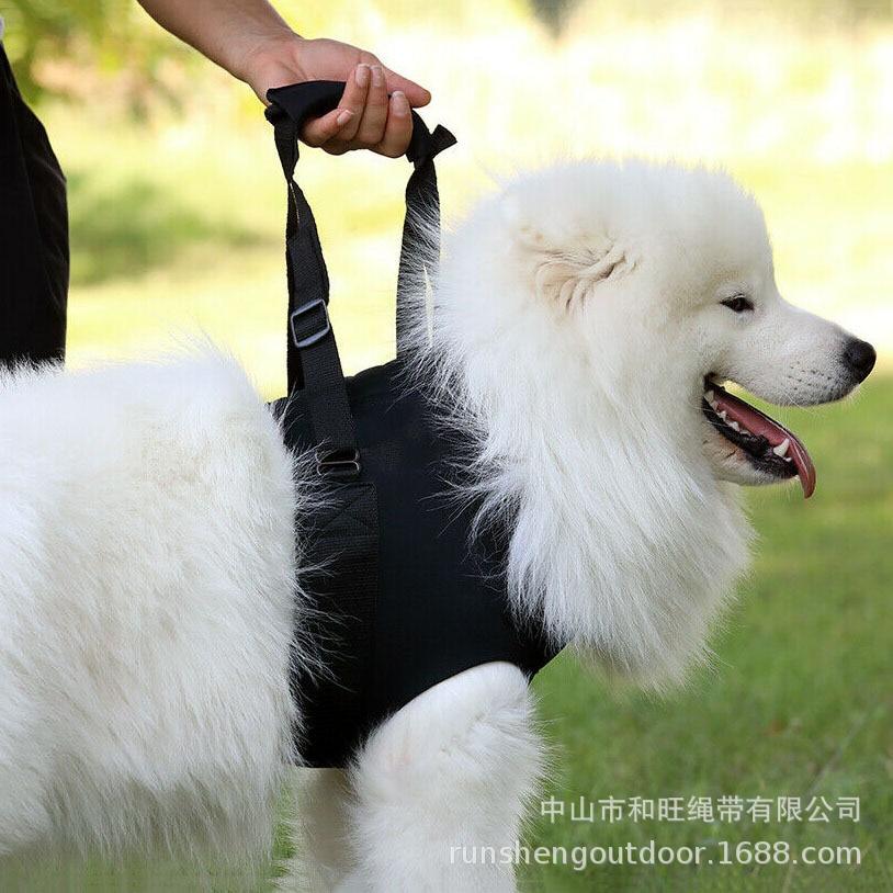 Pet Supplies Upstairs Car Action Safe Supplies Old Disability Golden Retriever Dog Pet Auxiliary Belt