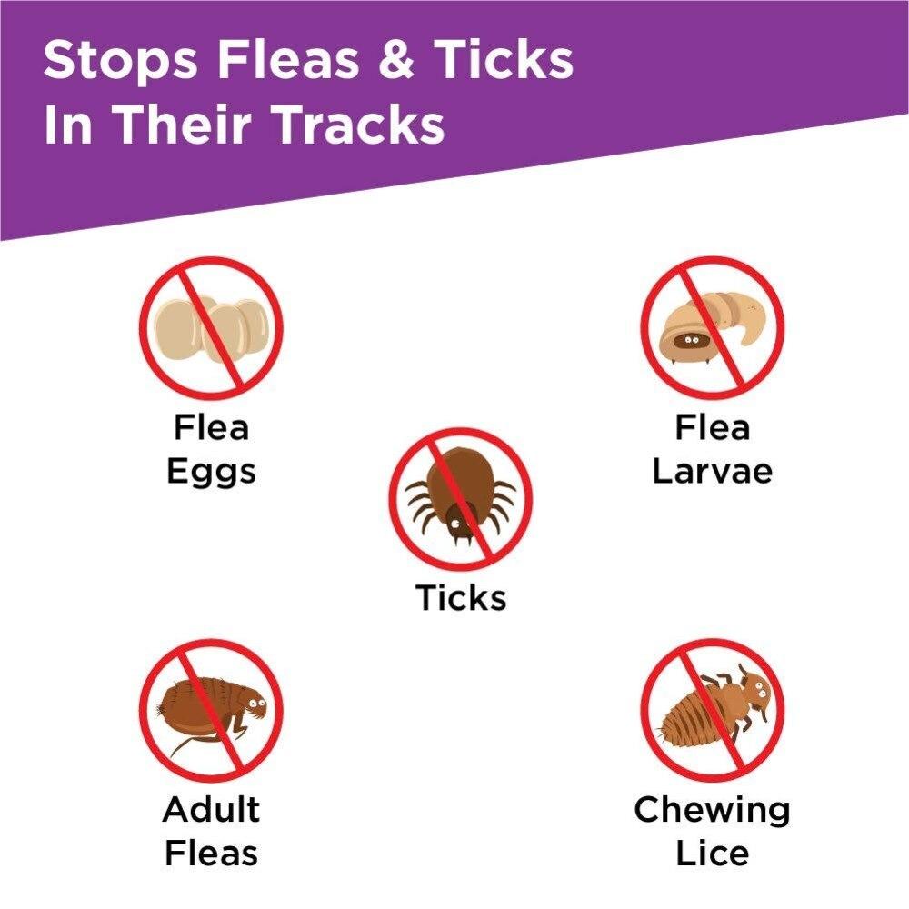 Frontline-Plus-for-Dogs-Cats-Flea-and-Tick-Treatment-3pcs-6pcs (1)