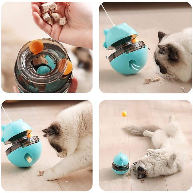 Fun Tumbler Kitten Toy 6