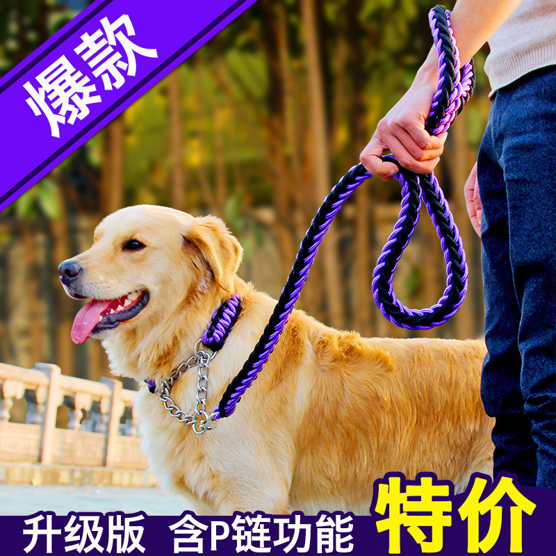 Upgraded Double Color Neck Ring Stereotyped Rope P Pendant Medium Large Dog Traction Belt Puppy Lanyard Dog Pendant Sub-Pet Trac