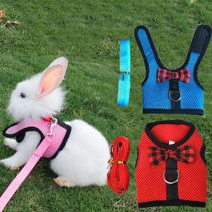 Pet-Strap Harnesses Lead-Vest Leash Cute-Accessories Animal Small 15