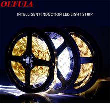 Oufula  Led Strip Light With USB Induction Light With 5V Waterproof IP44 Human Intelligent Light Bar