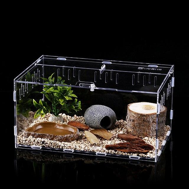 Reptile Breeding Terrarium  2