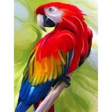 Gatyztory животные картина маслом по номерам попугай для взрослых