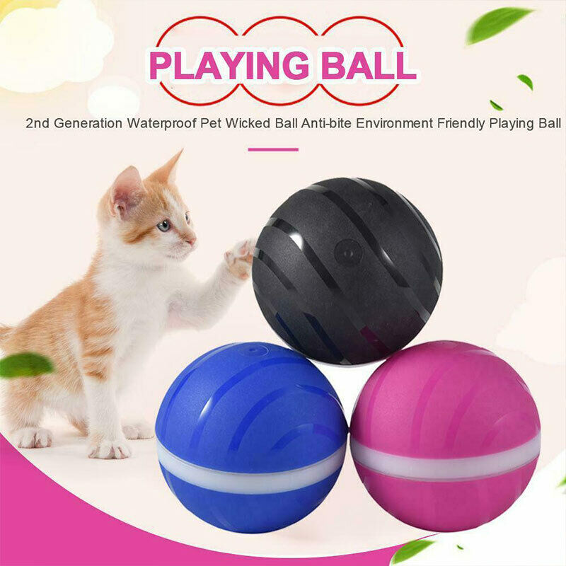 2019 Newest High Quality LED Wicked Ball New Design Pet Dog Cat Toy Interactive Toy Electric Companion Pet Puppy Cat Ball Tools