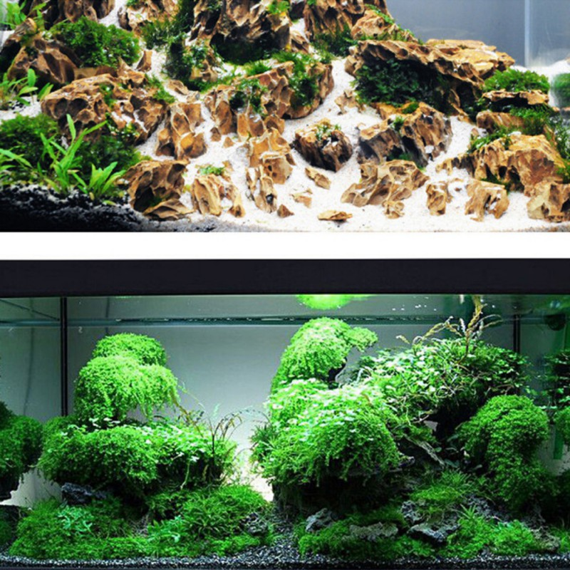 Fish Tank Landscaping Moss Ball Moss Glue Stick Water Grass Aquarium Decoration Mucilage Glues Fish Tank Repair Tools