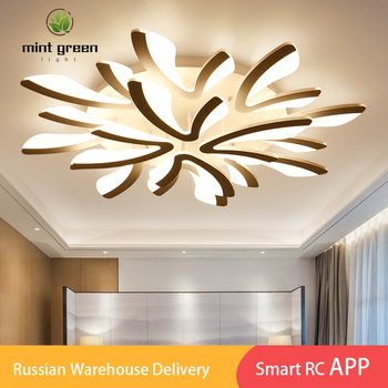 Led Chandelier Ceiling Lamps Modern LED Light Living Room Dining Bedroom Lustre lampara deco techo Lighting Fixture